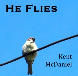 he flies, art